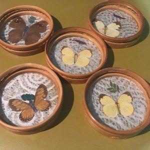 Vintage Butterfly Coaster Set of 5 Bamboo